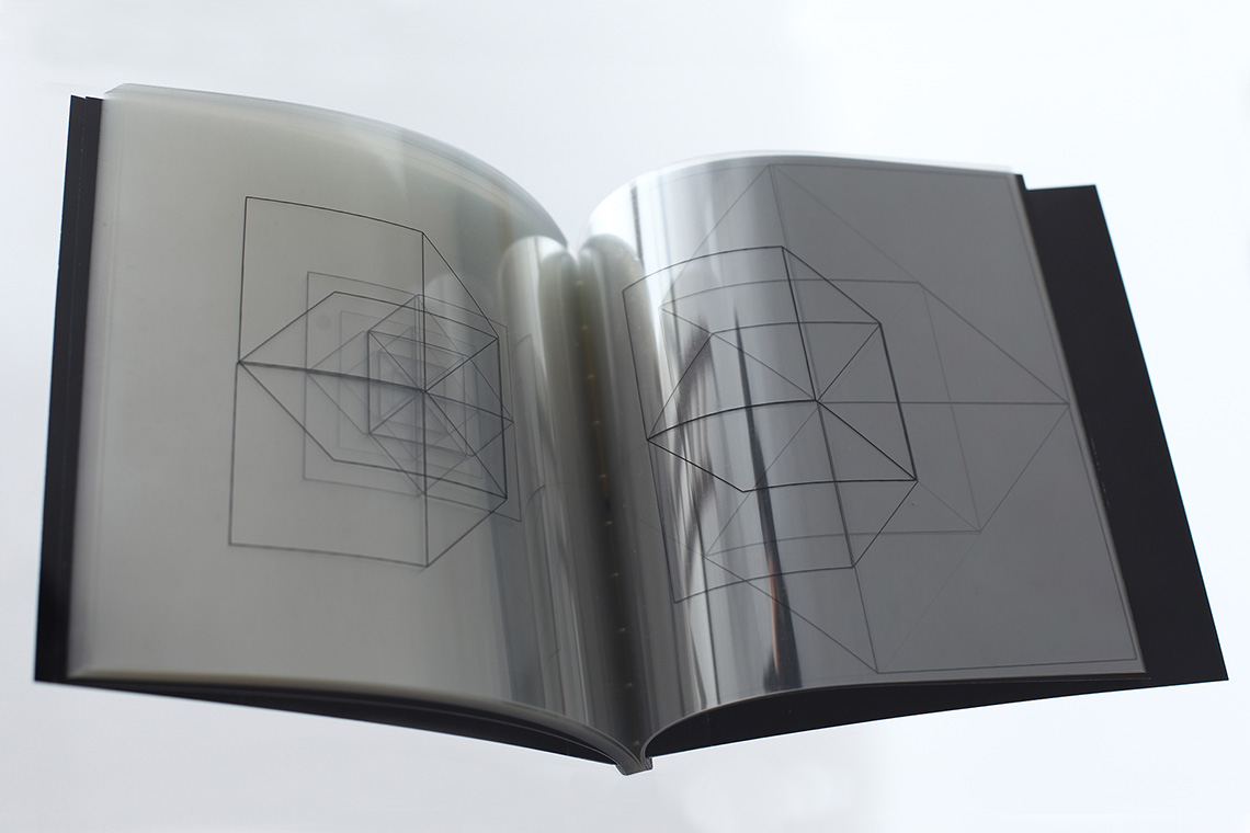 Ivana Franke. 2-3D